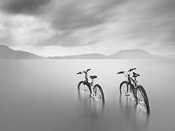 Photofy Partner - Moises Levy