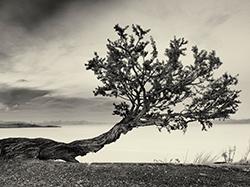 Photofy Partner - Geoffrey Ansel Agrons